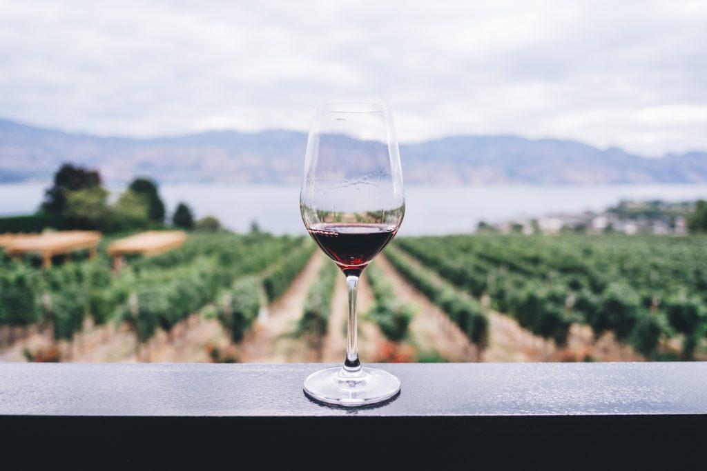 Un verre de vin rouge devant un paysage de vignes
